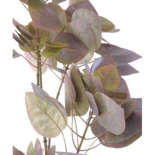 Perukowiec gałąź 100 cm  klm1053 green purple