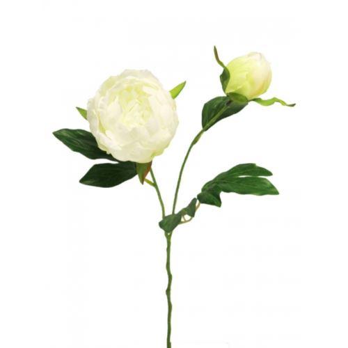 Peonia Isabella cream 40cm