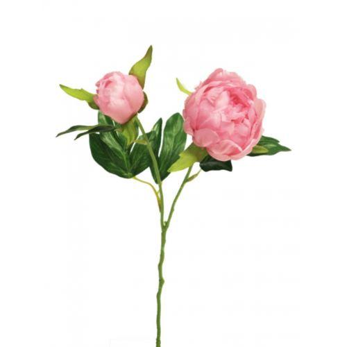 Peonia Isabella pink 40cm