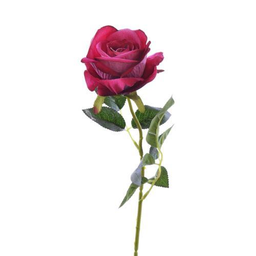 Róża poj velvet /T04  4Beauty