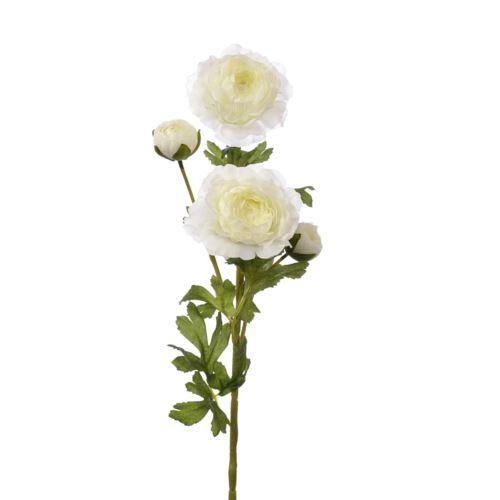 Pełnik ranunculus x 4 65cm zl028 white cream