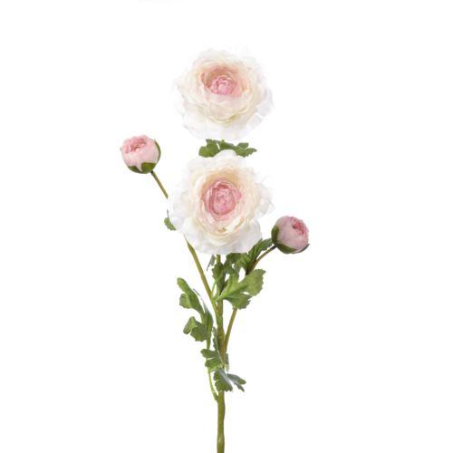 Pełnik ranunculus x 4 65cm zl028  white cream pink