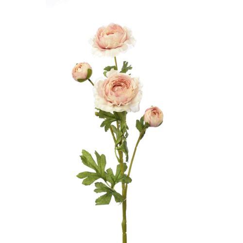 Pełnik ranunculus x 4 65cm zl028 white powder pink