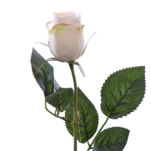 Różą w pąku 45 cm MY85 cream pink
