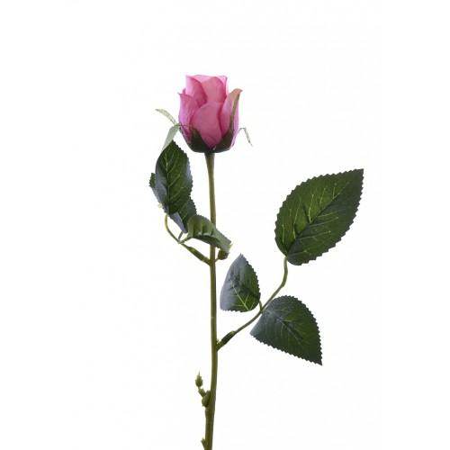 Różą w pąku 45 cm MY85 beauty pink cream
