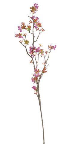 Kwitnaca wisnia 104cm