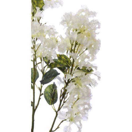 Lagerstremia  105 cm liu393 white