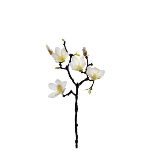 MAGNOLIA DROBNA NATURAL 60 CM WHITE