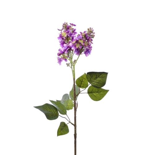 Bez x2 72cm sun301 purple