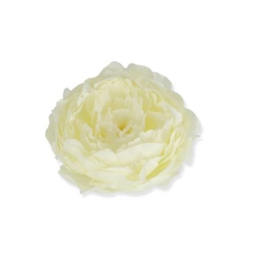 PEONIA HEAD 14CM /2017 WHITE CREAM