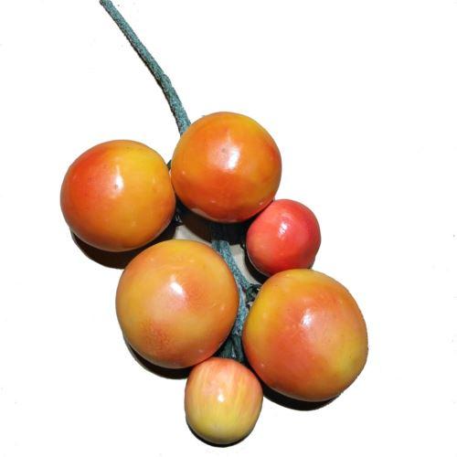 Pomidory gałązka orange Z-11