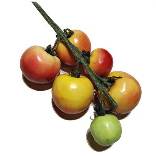 Pomidory gałązka red/green Z-11