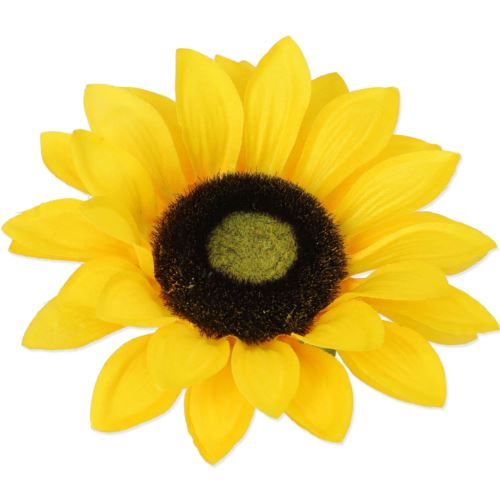 SŁONECZNIK GŁÓWKA SAT. W/1126 yellow