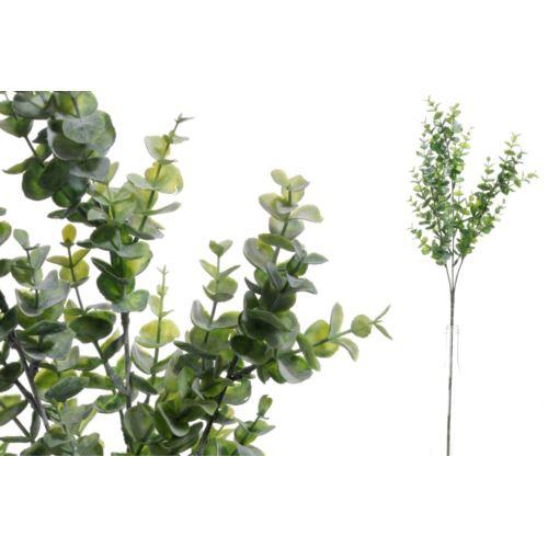 GAŁĄZKA EUKALIPTUS GREEN 65cm