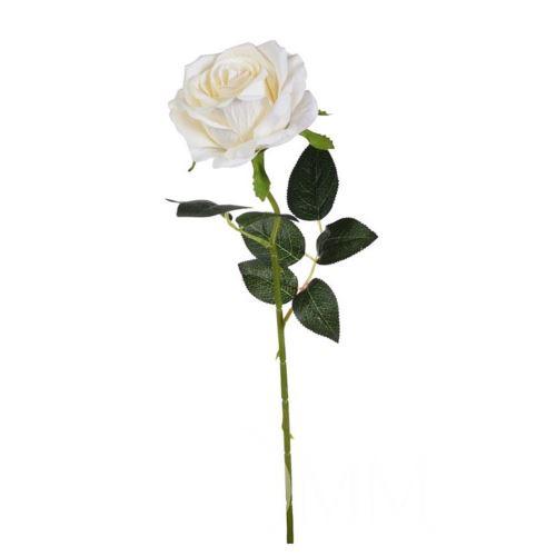 Róża poj. 50 cm white