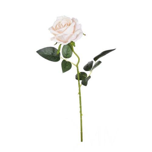 Róża poj. 50 cm cream