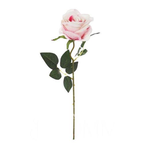 Róża poj. 50 cm cream/pink