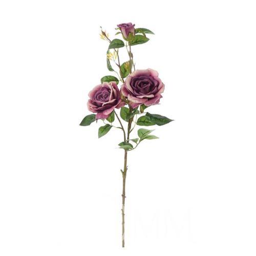 Róża gałązkowa 83cm dark violet