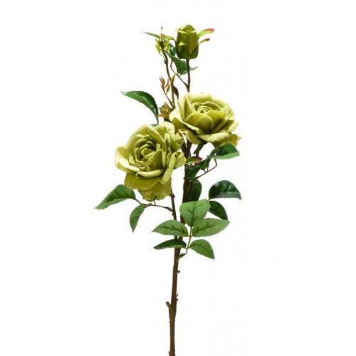 Róża gałązkowa 83cm dk. Green