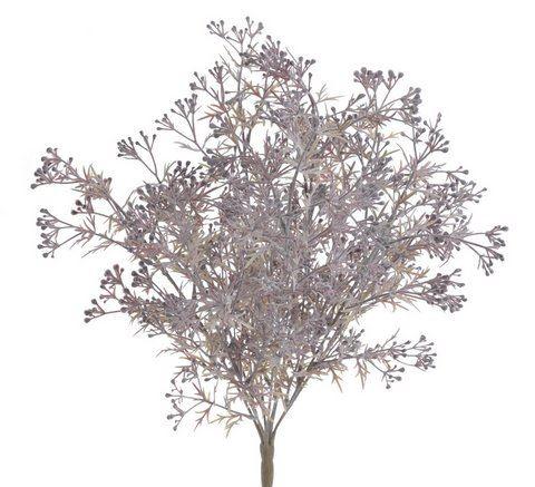 Galazka broom bloom -sztucz.rosl.