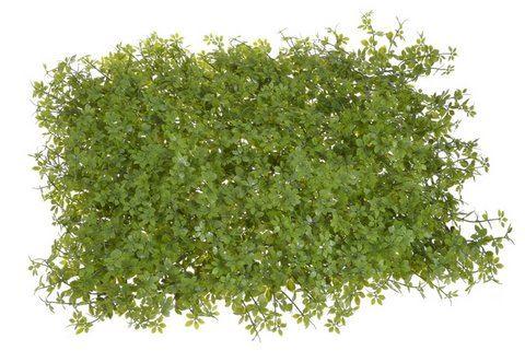 Mata łąka 40x60cm green