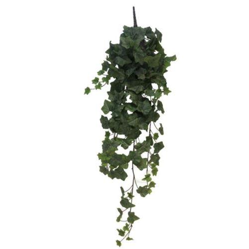 Frosted Ivy Chicago hanger L 86cm 203 lvs