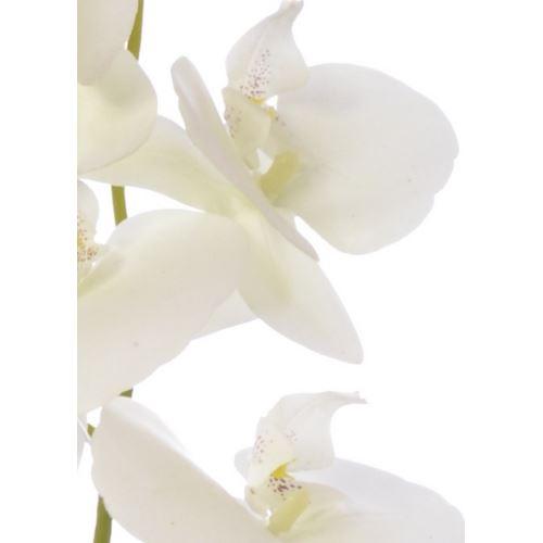 STORCZYK  NATURAL 106CM ZB019  8 WHITE