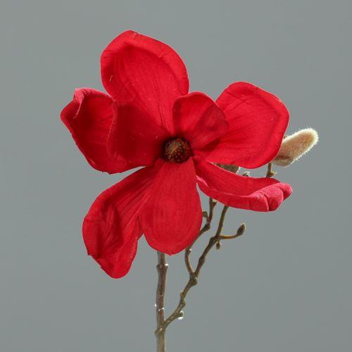 Magnolia 26 cm red