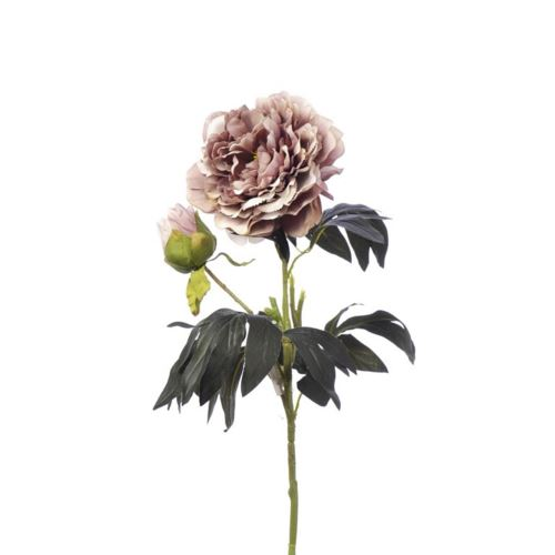 SINGLE PEONIA 94CM CV11637 DIRTY MAUVE