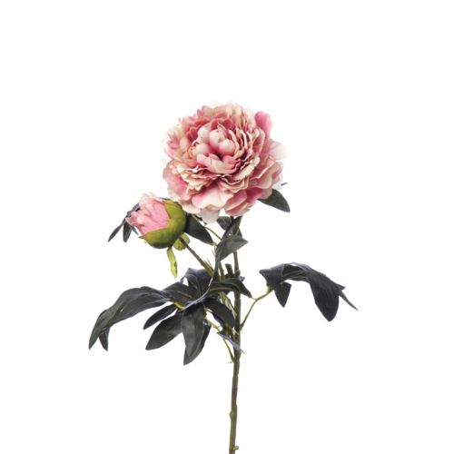 SINGLE PEONIA 94CM CV11637 WHITE PINK