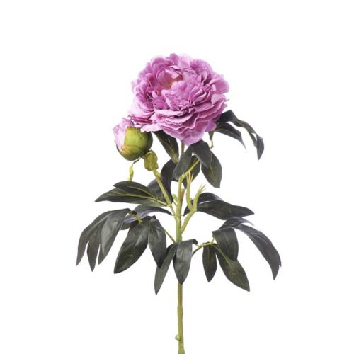 SINGLE PEONIA 94CM CV11637 OLD BEAUTY