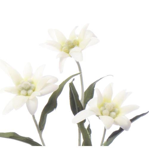 SZAROTKA 3 29CM WHITE
