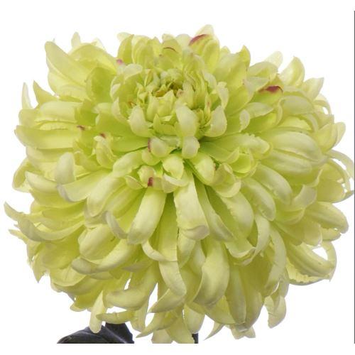 Chrysanthemum 87 cm art119 green