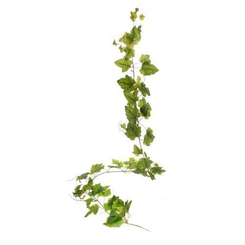 Winorośl - girlanda gumowana 200cm green