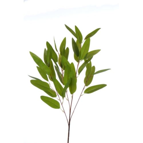 EUKALIPTUS LONG LEAVES 85CM GREEN