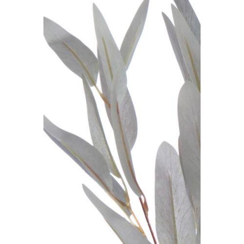 EUKALIPTUS LONG LEAVES 85CM GREY