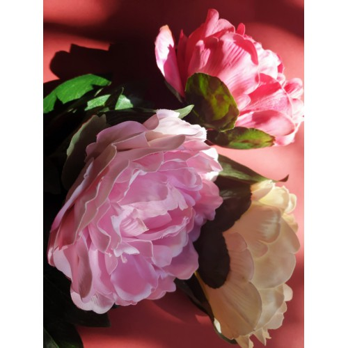 Peonia poj.  natural touch 68cm beauty pink
