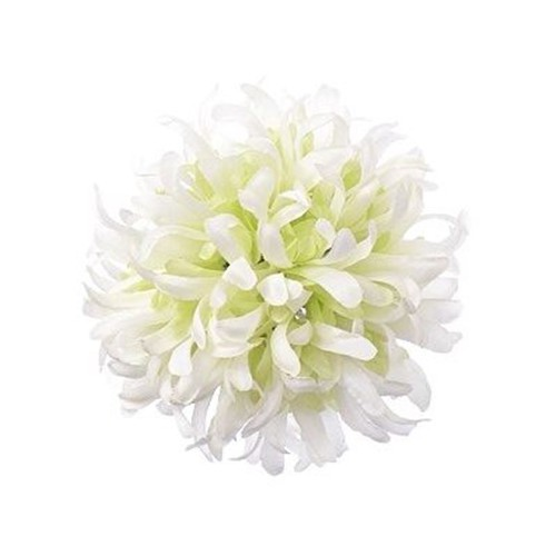 Chryzantema BALL ART100 11 WHITE/GREEN
