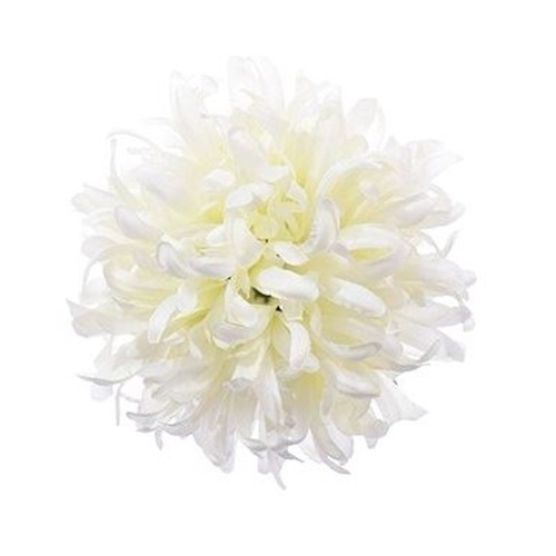 Chryzantema BALL ART100 1 WHITE