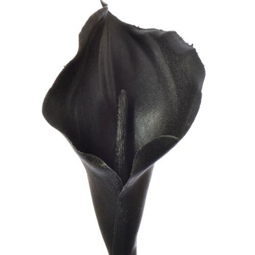 CALLA GUMA 70 CM AL45537 BLACK