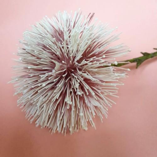Allium ball  spider – czosnek 48cm pink