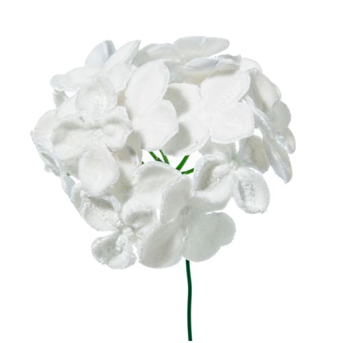 PICK HORTENSIA DELUXE VELVET IN PVC BOX