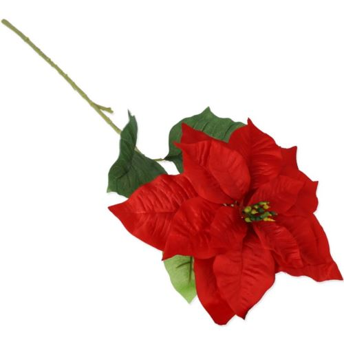 SINGLE POINSETTIA 80cm p./NH302 RED