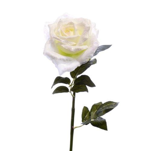 Róża poj. opruszona 75cm xart006 white