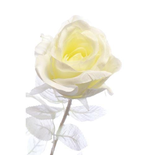 Róża czarna z brokatem 77cm white cream