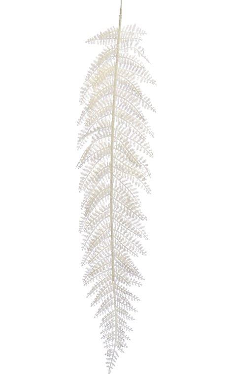 Liść paproci ośnieżony  xtik032  white