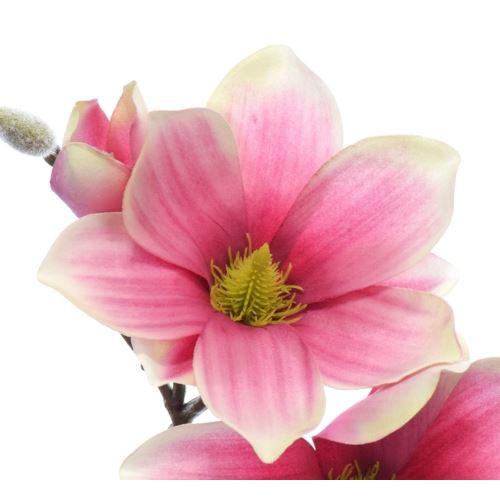 Gałązka magnolia SUN488 PINK