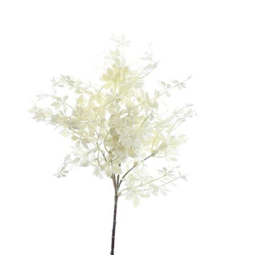 Drzewko z drobnymi listkami liu445 cream