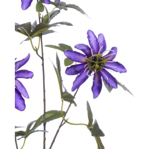 Passiflora 90cm aj68172 violet