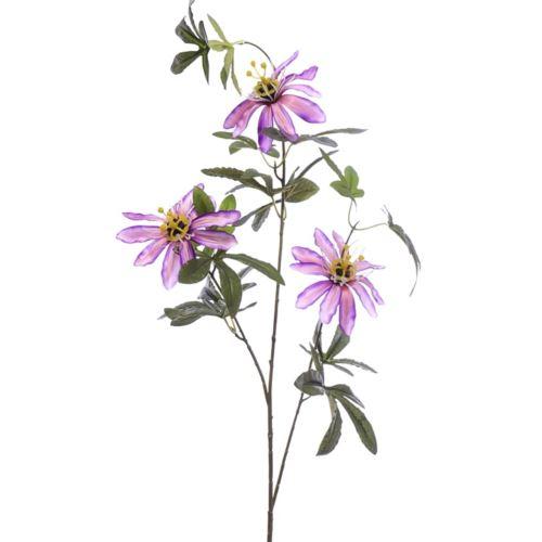 Passiflora 90cm aj68172 pink violet